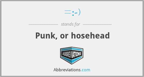 =:-) - Punk, or hosehead