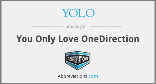 YOLO - You Only Love OneDirection