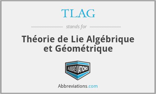 TLAG - Théorie de Lie Algébrique et Géométrique