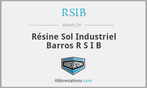 RSIB - Résine Sol Industriel Barros R S I B