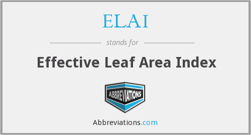 ELAI - effective leaf area index