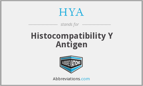 HYA - Histocompatibility Y Antigen