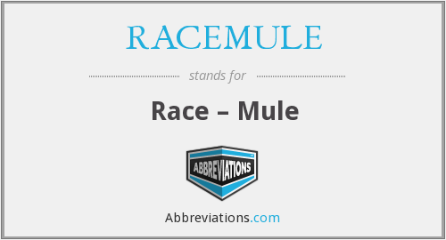What does RACEMULE stand for?