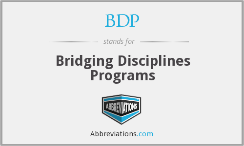 BDP - Bridging Disciplines Programs