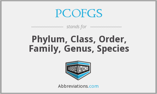 PCOFGS - Phylum, Class, Order, Family, Genus, Species