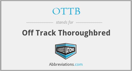 OTTB - Off Track Thoroughbred