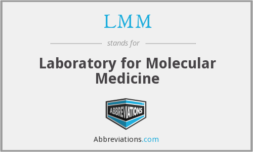 LMM - Laboratory for Molecular Medicine