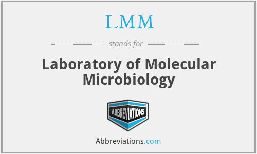 LMM - Laboratory of Molecular Microbiology