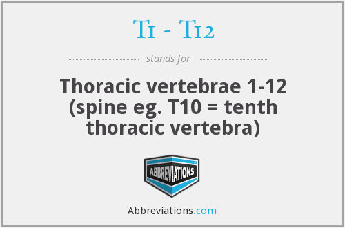 T1 - T12 - Thoracic vertebrae 1-12 (spine eg. T10 = tenth thoracic vertebra)