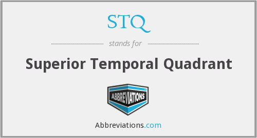STQ - Superior Temporal Quadrant