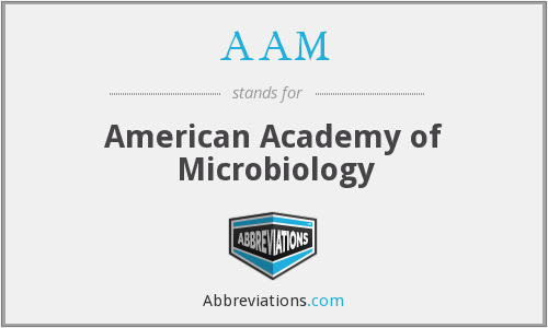 AAM - American Academy of Microbiology