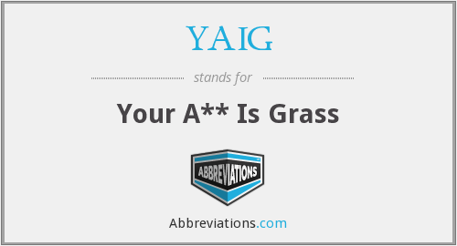 What does YAIG stand for?
