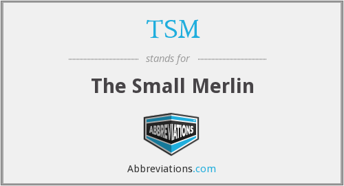 TSM - The Small Merlin