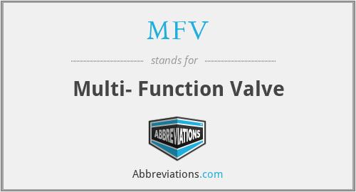 MFV - Multi- Function Valve