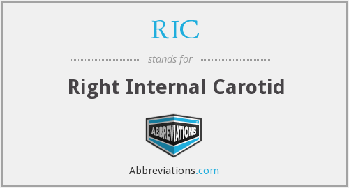 RIC - right internal carotid
