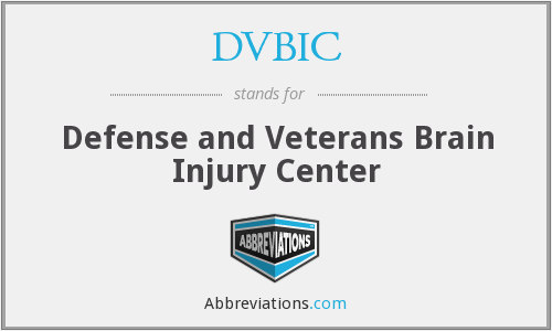 What does DVBIC stand for?