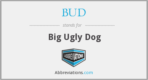 BUD - Big Ugly Dog