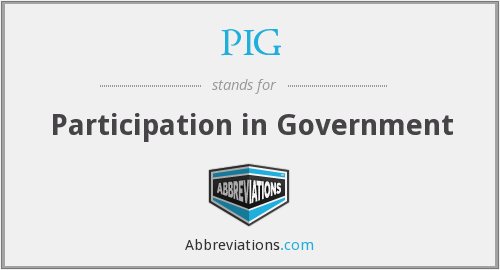 PIG - Participation in Government