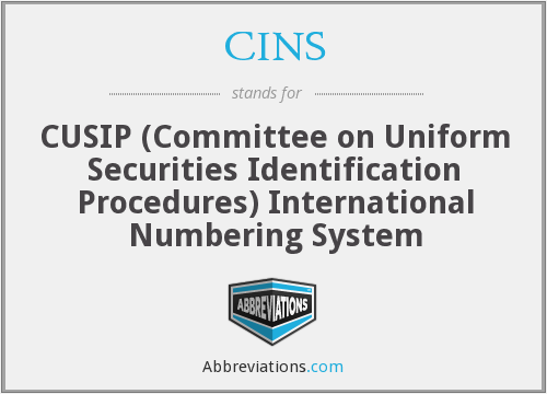 What does CINS stand for?