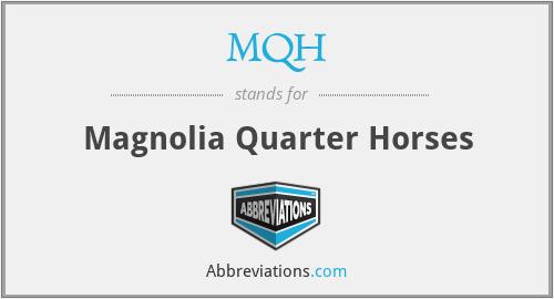 MQH - Magnolia Quarter Horses