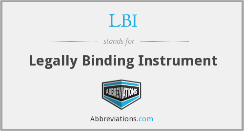 LBI - Legally Binding Instrument