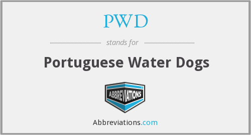 PWD - Portuguese Water Dogs