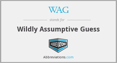 WAG - Wildly Assumptive Guess