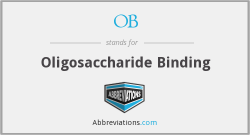 OB - Oligosaccharide Binding
