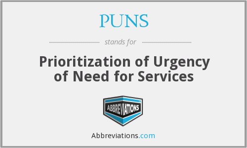 PUNS - Prioritization of Urgency of Need for Services