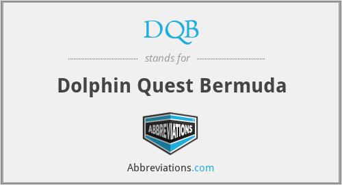 DQB - Dolphin Quest Bermuda