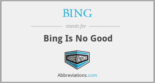BING - Bing Is No Good