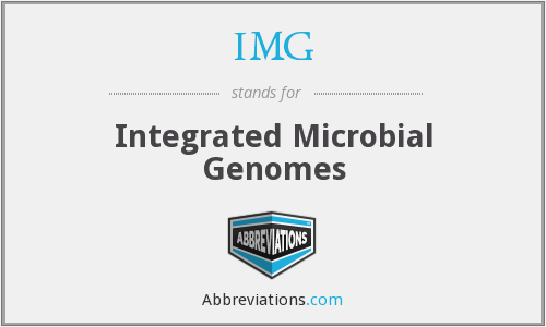 IMG - Integrated Microbial Genomes