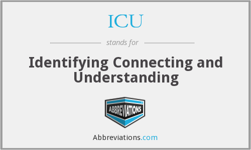ICU - Identifying Connecting and Understanding