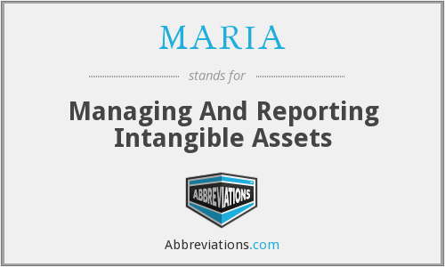 MARIA - Managing And Reporting Intangible Assets