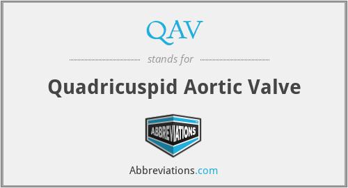 QAV - Quadricuspid Aortic Valve