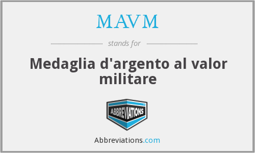 What does MAVM stand for?