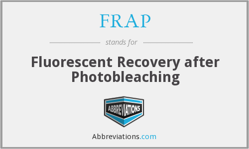 FRAP - Fluorescent Recovery after Photobleaching