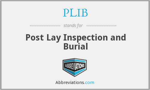 PLIB - Post Lay Inspection and Burial