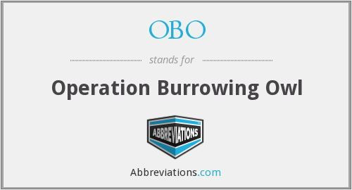 OBO - Operation Burrowing Owl