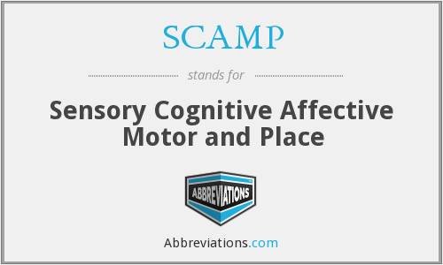 SCAMP - Sensory Cognitive Affective Motor and Place