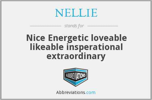 What does NELLIE stand for?