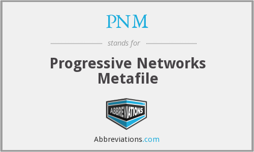 PNM - Progressive Networks Metafile