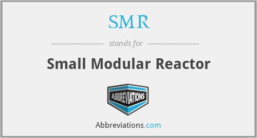 SMR - Small Modular Reactor