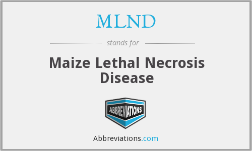What does MLND stand for?