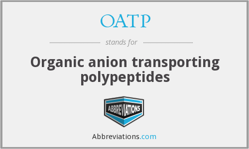 OATP - Organic anion transporting polypeptides