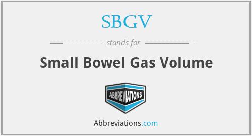 SBGV - Small Bowel Gas Volume