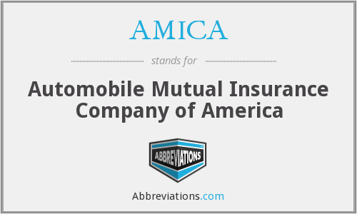 What does AMICA stand for?