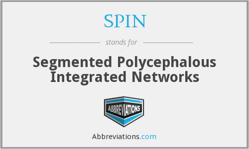 SPIN - Segmented Polycephalous Integrated Networks