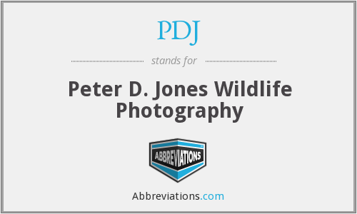 PDJ - Peter D. Jones Wildlife Photography