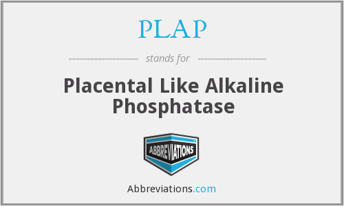 What does PLAP stand for?